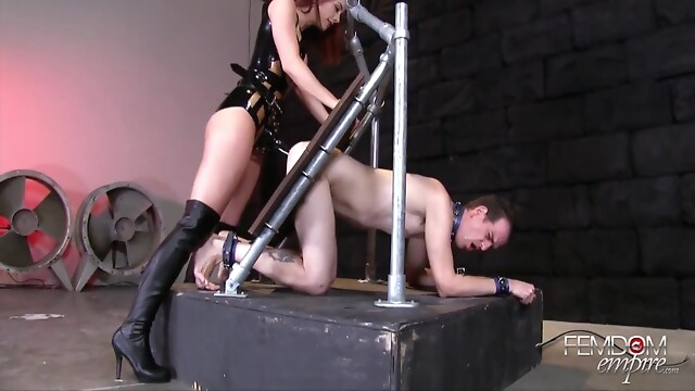 Tube Sex  - Chanel Preston, Strapon At bdsm